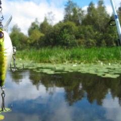Особенности весенних рыболовных туров на Волге